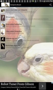 Calopsita Brasil screenshot 5