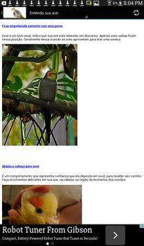 Calopsita Brasil screenshot 7