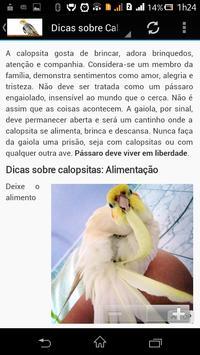 Calopsita Brasil screenshot 1