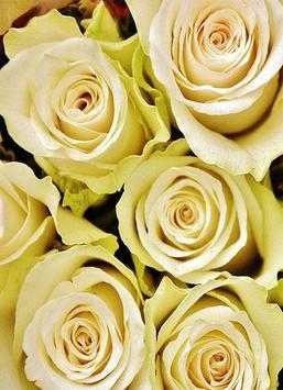 Fondos con Flores screenshot 4