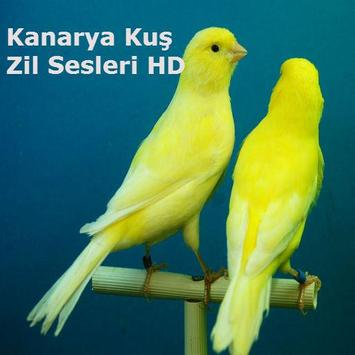 Kanarya Kuş Zil Sesleri HD screenshot 6