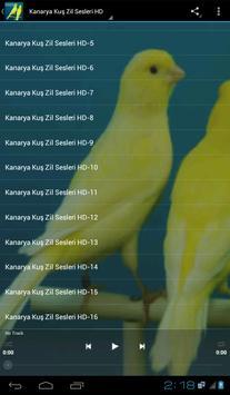 Kanarya Kuş Zil Sesleri HD poster
