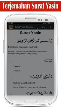 Surat Yasin MP3 screenshot 3