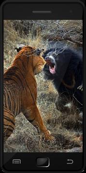 Wild Animals screenshot 1