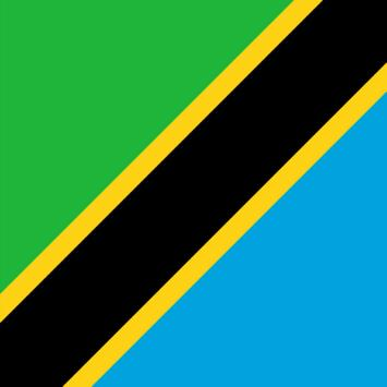 Tanzania News World poster