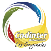 codinterauto icon