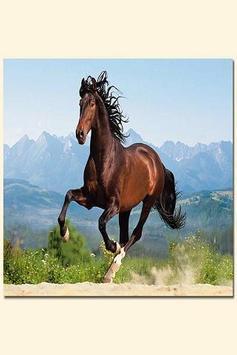 Mustangs apk screenshot