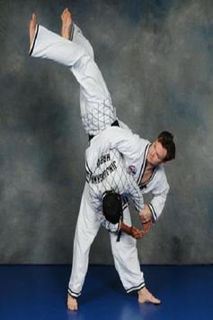 Hapkido screenshot 1