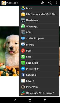 Imagenes De Perritos 4U screenshot 3