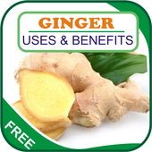 Ginger Uses & Benefits icon