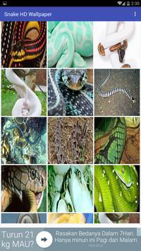Snake HD Wallpapers apk screenshot