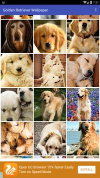 Golden Retriever Wallpaper screenshot 2