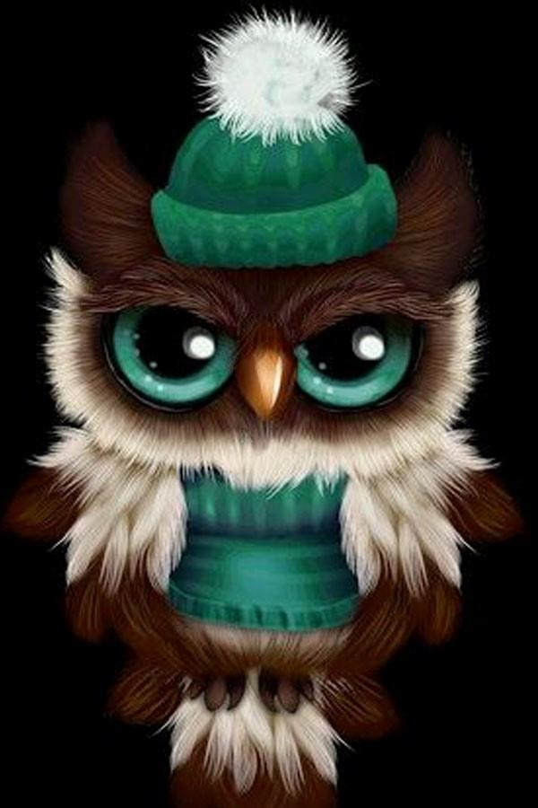 Cute Owl Wallpaper For Android Apk Download