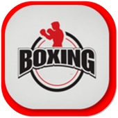 Boxing Workout icon