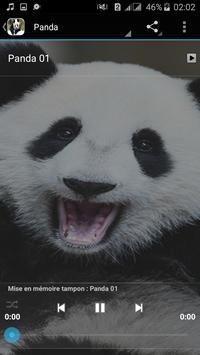Panda Sounds apk screenshot