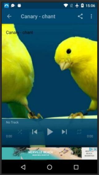 CANARI TÉLÉCHARGER MP3 GRATUIT FLAWTA CHANT