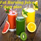 Fat Burning Juice -7days plan icon