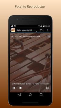 Marimba Radio Pro screenshot 1