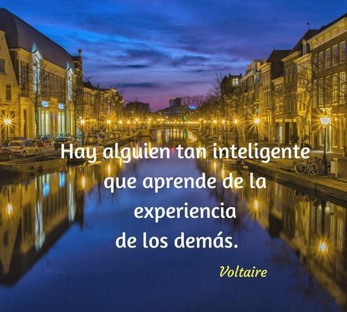 Frases De Sabiduría For Android Apk Download