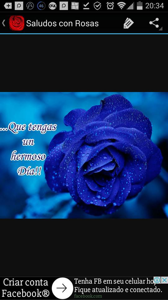 Saludos De Amistad Y Amor Con Rosas Bonitas For Android