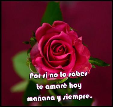 Rosas para mi amor screenshot 3
