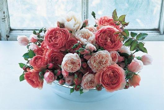 Beautiful Roses screenshot 2