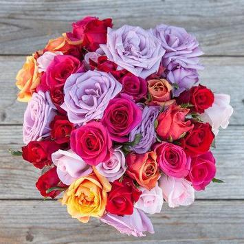 Beautiful Roses screenshot 5