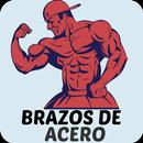 Bíceps y Tríceps APK