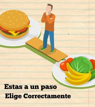 Dietas para adelgazar fácil screenshot 1