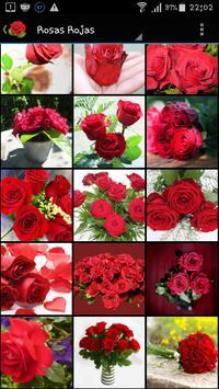 Rosas Rojas de Amor poster