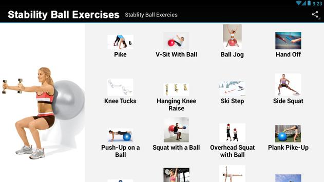 Stability Ball Exercises screenshot 3