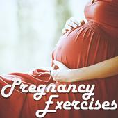 Pregnancy Excercises icon