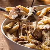 Mushroom Recipes icon