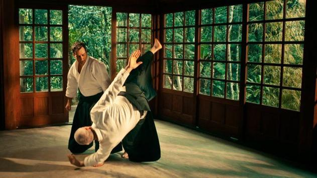 Aikido techniques for Android - APK Download