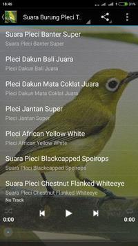 Suara Burung Pleci Gacor mp3 poster