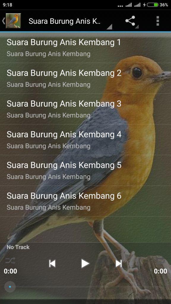 Burung Anis Merah Gacor Mp3 For Android Apk Download