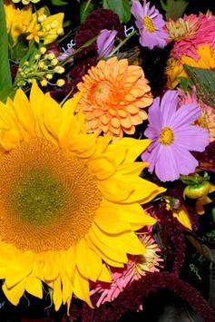 Floristry screenshot 2