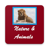 Nature and Animals Wallpapers Always New icon