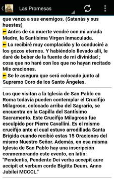 15 Oraciones de Santa Brígida screenshot 3