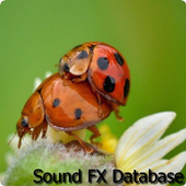 Insects Sounds 2 icon