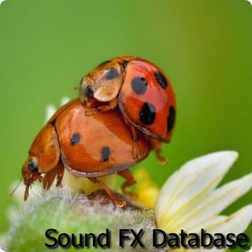 Insects Sounds 2 apk screenshot