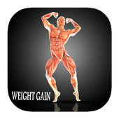 fitness trainer: weight gainer icon