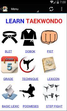 taekwondo wtf apk screenshot