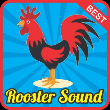 Rooster Sound Effect mp3 poster