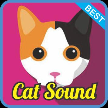 Cat Sound Effect mp3 poster