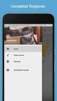 Kitten Sounds poster