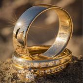 Wedding ring models icon