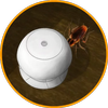 Get Rid of Roaches icon