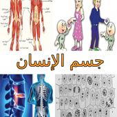 جسم الإنسان Human Body icon