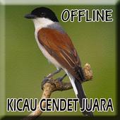 Suara Burung Cendet Gacor icon